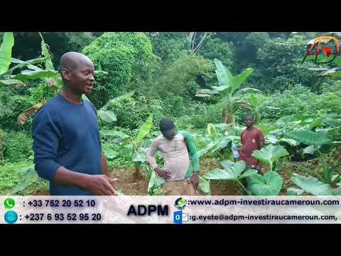 visite technique du champ d'un client  ADPM.
