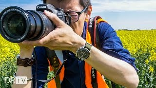 5 Key Differences: Canon 80D & 7D Mark ii