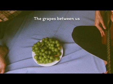 (Original-song)-The-Grapes