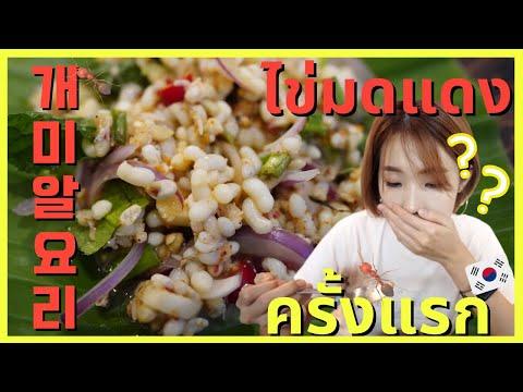 🇹🇭🇰🇷-คนเกาหลีลองกินไข่มดแดงครั