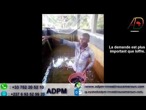 ADPM réalise le rêve d'un clients