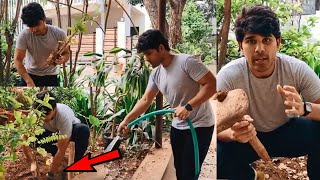 Allu Sirish Accepts Vishwak sen's Green India Challenge | Haritha Haram | Latest Tollywood News - RAJSHRITELUGU