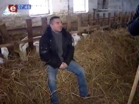 Фермири козів відео фото 696-739