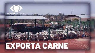 Exportação de carne: setor enfrenta novas barreiras