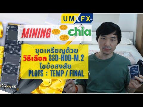 ขุดเหรียญ-Chia-วิธีเลือก-HDD-S