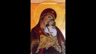 Santo Evangelio, Padre Elías 17 de marzo