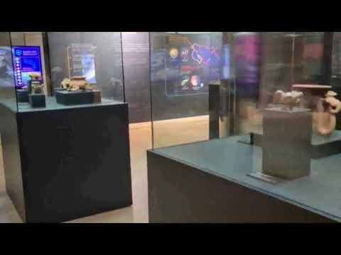 Museos del Banco Central abrirán nuevas exposiciones de arqueología