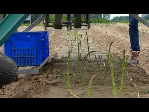 GARotics – Green asparagus harvesting robotic system