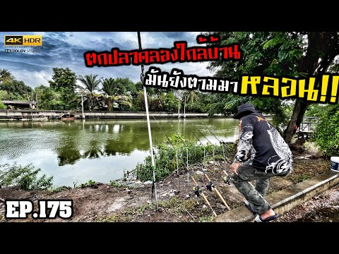 """🎣🐠-We-are-Angler-EP:175-""""ตามหา"""