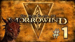 Прохождение The Elder Scrolls 3: Morrowind (TES III) - Начало приключений #1