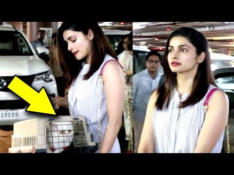 Prachi Desai Spotted With Her Cute Pussy Cat At Mumbai Airport