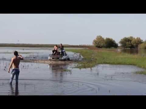Video: Silkės pasiplaukiojimas. -