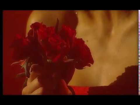 connectYoutube - Justyna Steczkowska - Kwiaty więdnące