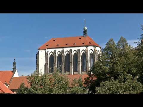 Praha - Festival Take Care