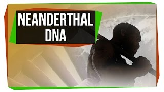 What Neanderthal DNA Is Doing To Your Genome