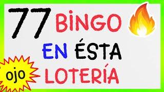 NÚMEROS GANADORES.! (( 77 )) BINGO hoy / loteria LA PRIMERA / RESULTADO de las LOTERÍAS/ PREMIOS HOY