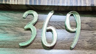 369 TESLA GATICO VIP#1 15.12.2020