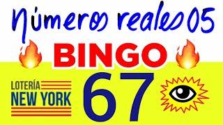NÚMEROS PARA HOY 04/07/20 DE JULIO PARA TODAS LAS LOTERÍAS..! Números reales 05 para hoy..!!