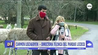 La situación en el Parque Lecocq: