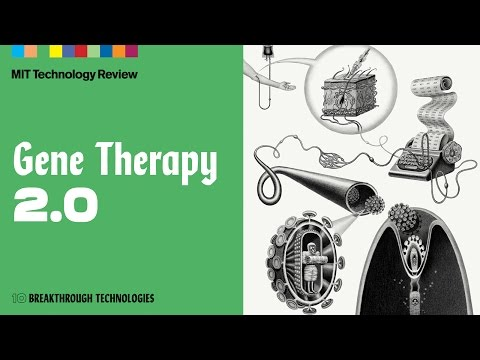 How Did Gene Therapy Go From Experimental Disasters to Wondrous Cures?
