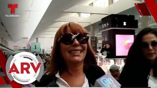 Famosos ARV: Alejandra Guzmán molesta con reporteros, aparición de Harry y más   Telemundo