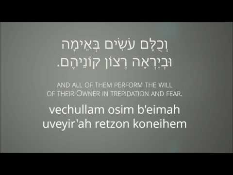 Kullam Ahuvim (All of them are Beloved) - כולם אהובים