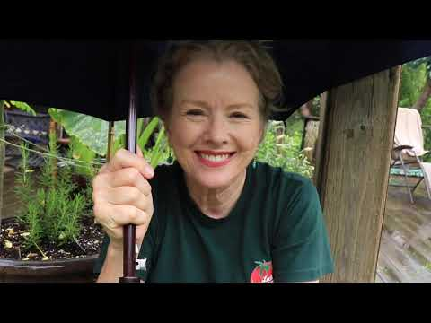COUNTRY SERENITY - One Acre Paradise | Garden Tour // Late Bloomer