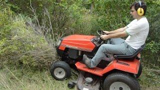 Lawn tractor vs. tree