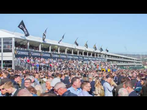 Arena UK & Europe - Cheltenham Festival 2017