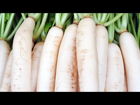 Is White Radish Good For Diabetes"