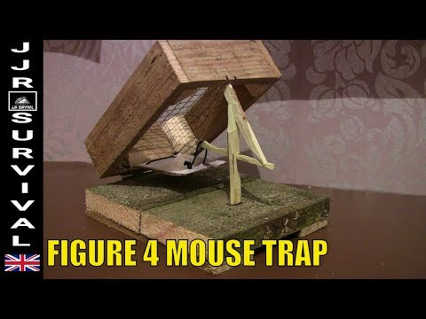 Figure 4 Mouse Trap