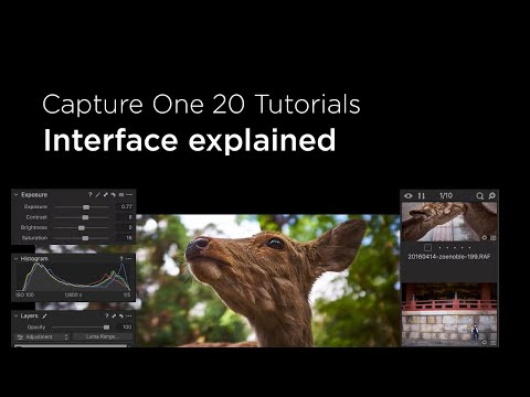 Capture One 20 Tutorials | Interface explained