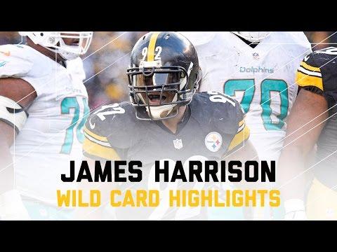 James Harrison 1.5 Sacks! | Dolphins vs. Steelers | NFL Wild Card Player Highlights