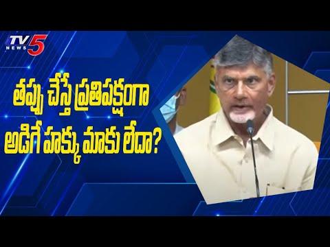 తప్పు చేస్తే ప్రతిపక్షంగా అడిగే హక్కు మాకు లేదా?:చంద్రబాబు  | TV5 News