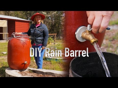 DIY Simple & Easy Rain Barrel For Your Garden