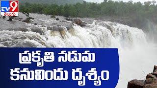 Bogatha Waterfalls : హోయలతో జలపాతం జాలువారుతోంది - TV9 - TV9