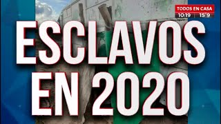 Increíble: Trabajo esclavo en pleno 2020