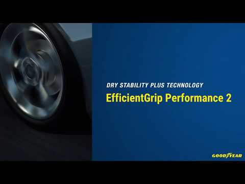 EfficientGrip Performance 2 | Dry Stability Plus Technology