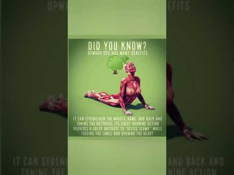 Did you know.....#shorts