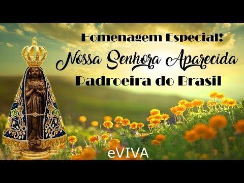 NOSSA SENHORA APARECIDA - HOMENAGEM - MENSAGEM ESPECIAL À PADROEIRA DO BRASIL - AGRADECIMENTO EVIVA