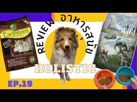 รีวิวอาหารสุนัขสูตรHolistic-ยี