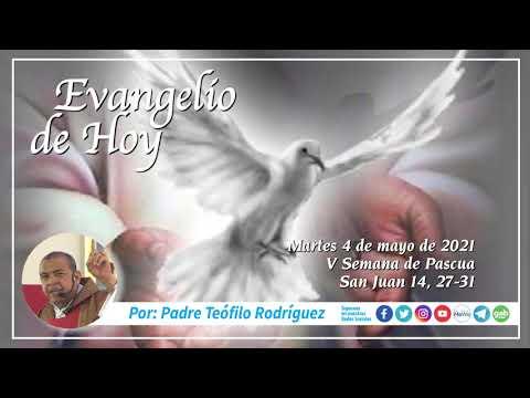 Reflexion del Evangelio de Hoy - Martes 4 de mayo de 2021