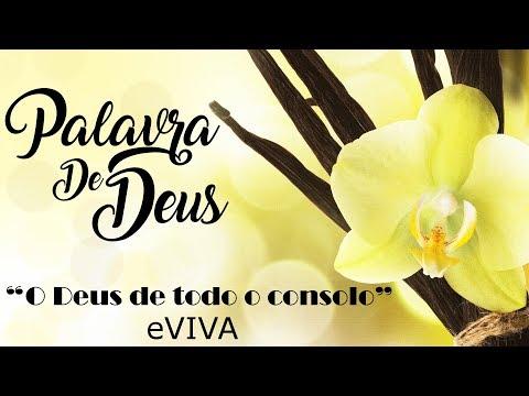 PALAVRA DE DEUS PARA HOJE 28 DE NOVEMBRO eVIVA MENSAGEM MOTIVACIONAL PARA REFLEXÃO DE VIDA