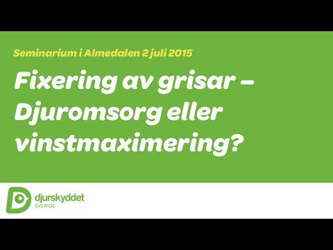 Seminarium: Fixering av grisar – djuromsorg eller vinstmaximering?