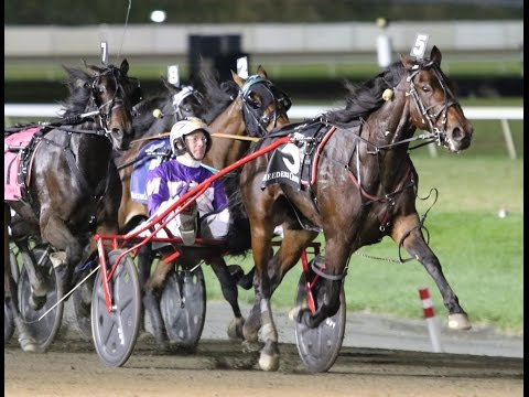 2016 Breeders Crown 3-Year-Old Filly Trot-Broadway Donna