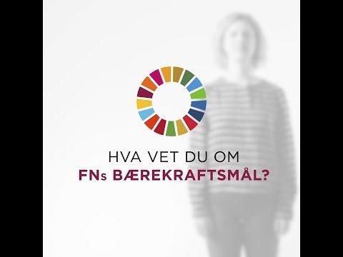 Hva vet du om FNs bærekraftsmål?