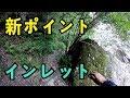バス釣り 高知県のダムでインレットを攻める!