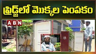 Hatsoff : Man Growing Mango Plants In Freeze In Vijayawada | ABN Telugu - ABNTELUGUTV