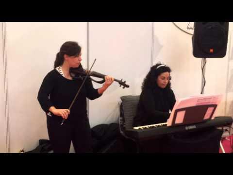 Violinista y Organista en el gran salón Nupzial. Música para bodas o eventos en Zaragoza