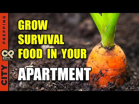 25 Survival Vegetables To Grow In Your Apartment (pt2)